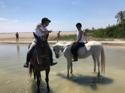 Horseback Ride in Puerto Rey Beach, 2 Hours