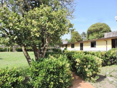 Campamento Urbano de Inglés en Nigrán, 1 semana