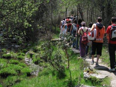 Giornata di escursioni alla carta a Duratón