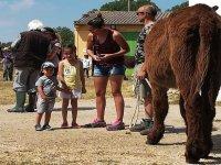 Niños junto a nuestros burros