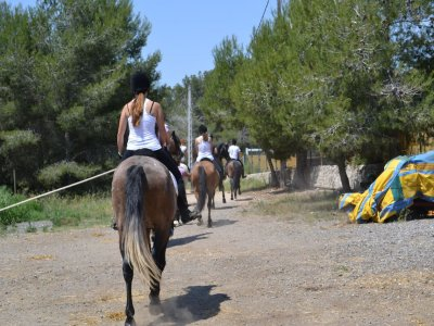 1h Forest Horseback Route in El Catllar
