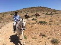 Siguiendo el camino canario a caballo
