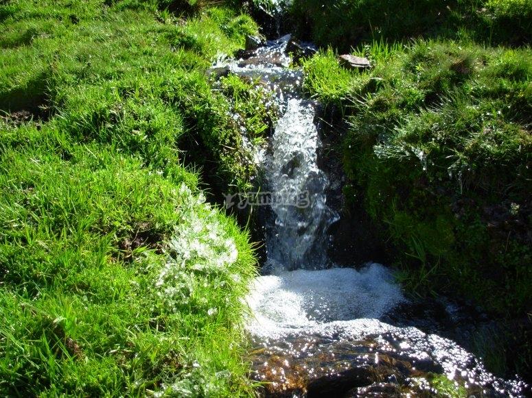 prado verde con cascada y piedra