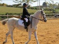 Montada en caballo blanco en Utrera