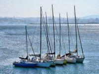 Barche a vela insieme
