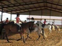 Clase de equitación en un recinto cerrado