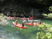 reamndo在河边戏水组皮划艇划桨