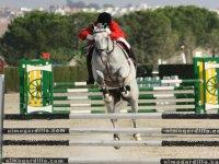 Clase de salto de equitación