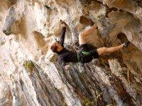 Profesional de la escalada