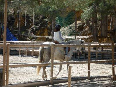 Clase iniciación a equitación en El Valle 40 min