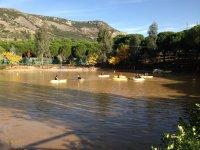 Navegar en kayaks en Badajoz