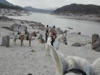 Nuestros afables caballos