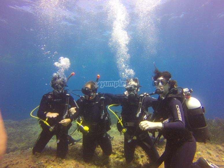 Buceadores en el curso Open Water Diver