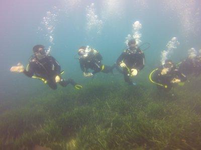 Curso Open Water Diver PADI en Calpe 3 días