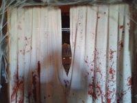 casa terror zamora
