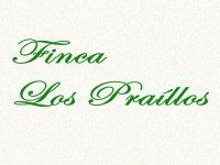 Finca Los Praíllos Team Building