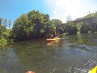 Experiencia de navegación