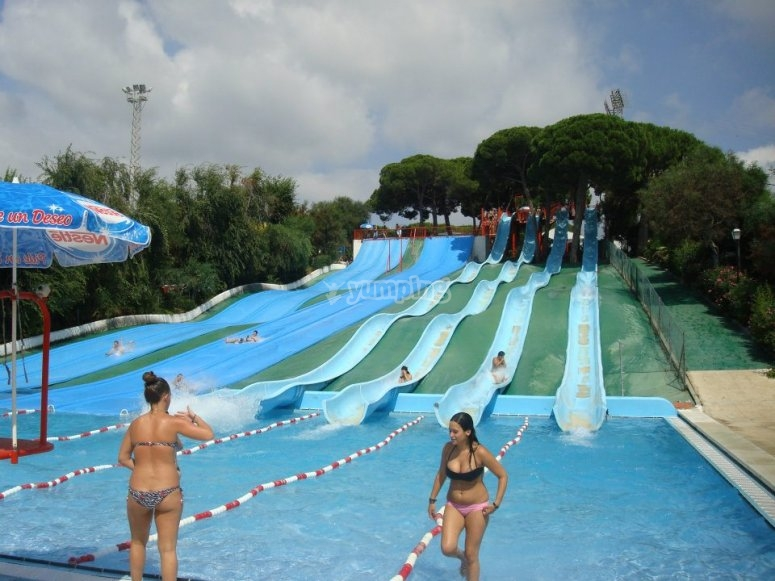 Race in the slides