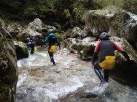 Crossing the ravine