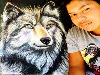 Lobo dibujado
