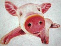 un cuadro de la cabeza de un cerdo
