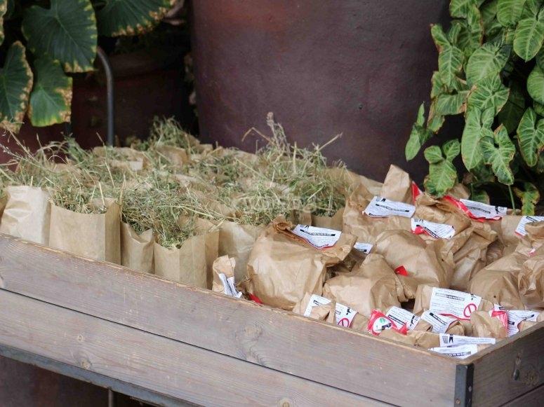 Food bag for animals
