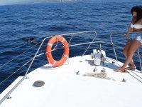 disfruta de los animales marinos
