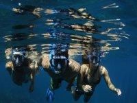 Disfruta del Snorkeling