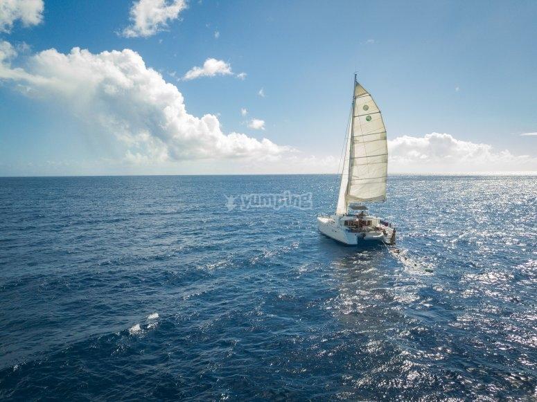 Navegando en catamaran para fiesta