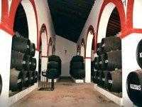 Winery facilities
