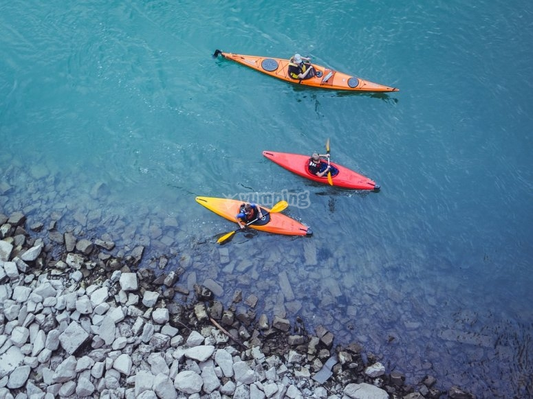 在河中划桨
