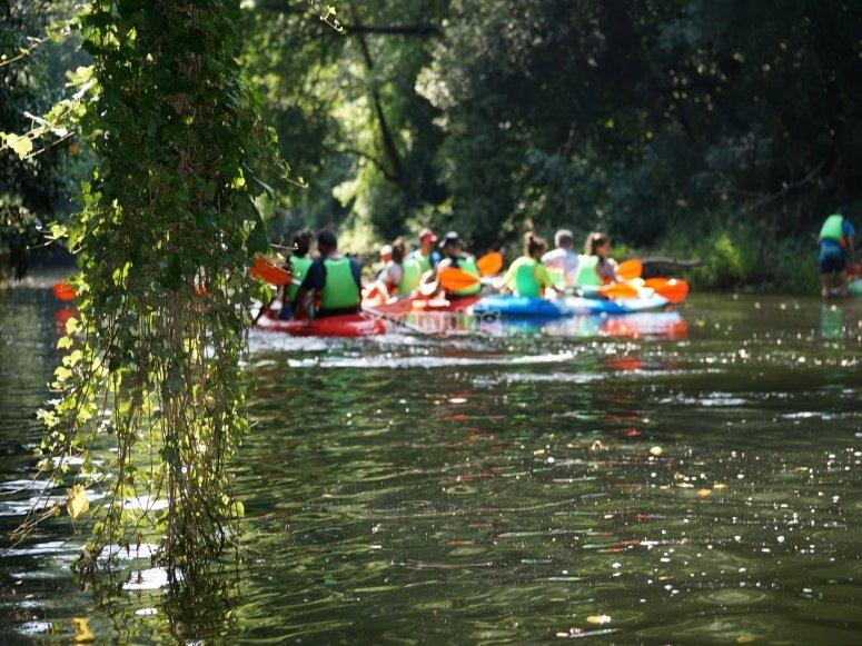 kayak en grupo