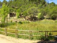 laguna rodeada por una valla