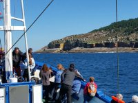 Ruta en barco acantilados por Punta Turrulla 1:30h