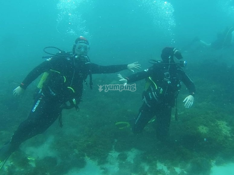 Buceo con instructor