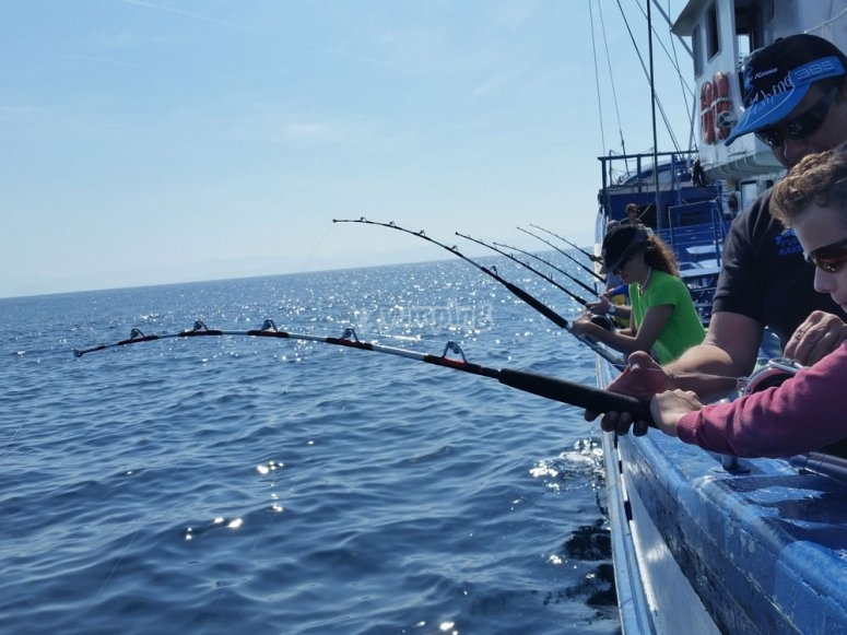 Pesca del verdel