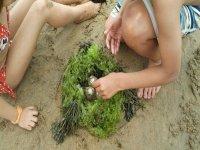 两个孩子在沙滩上玩海螺