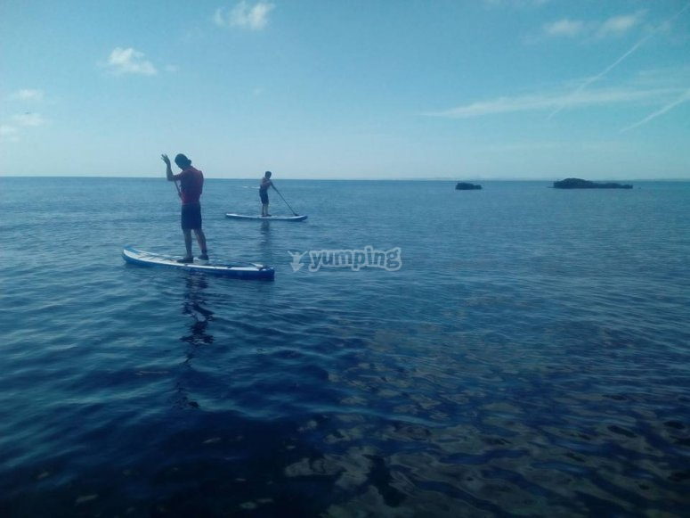 alquiler paddle surf