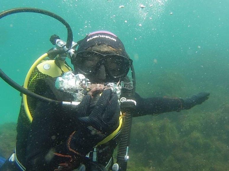 潜水照片报告