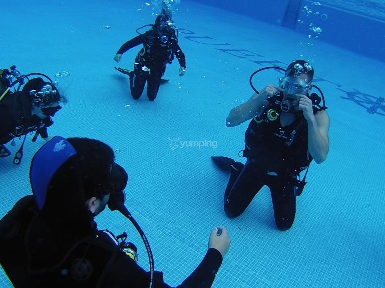 在游泳池潜水的洗礼