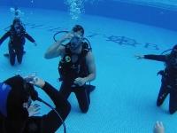在加的斯游泳池进行水肺潜水洗礼,视频2-3小时
