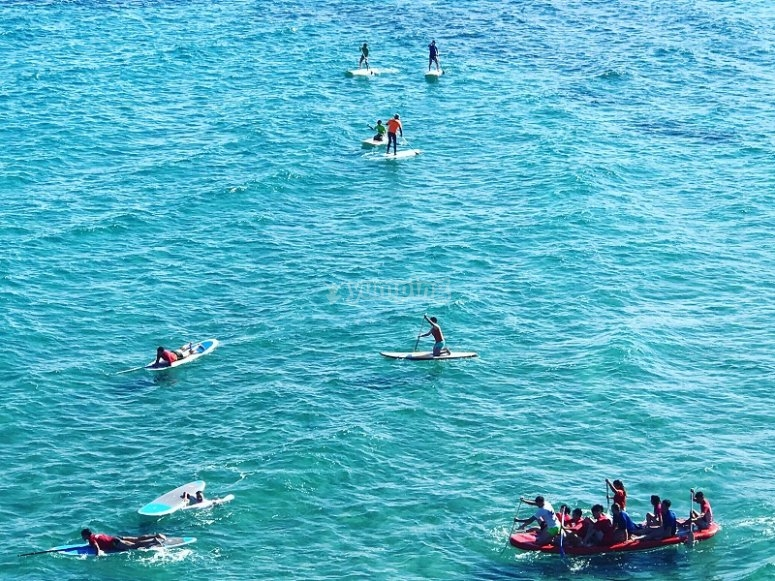Paddle surfing and BIG SUP group