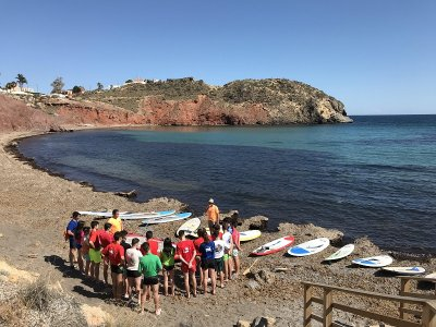 Paddle Surf Excursion up to Cueva Lobos Island