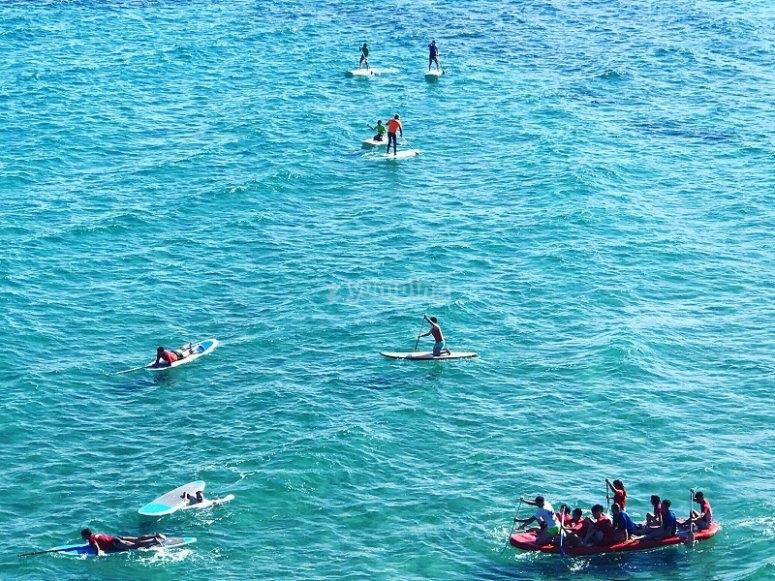 Paddle surf and BIG SUP group