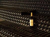 Botellas de nuestros vinos