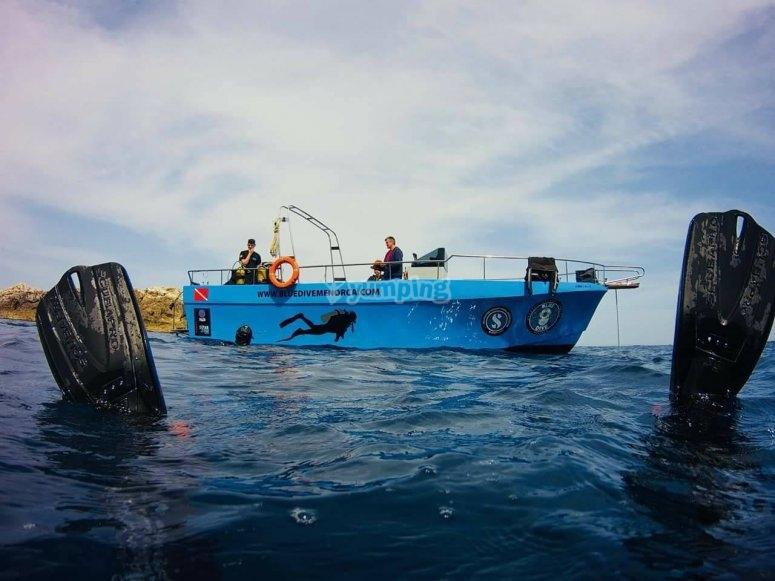 snorkel desde barco
