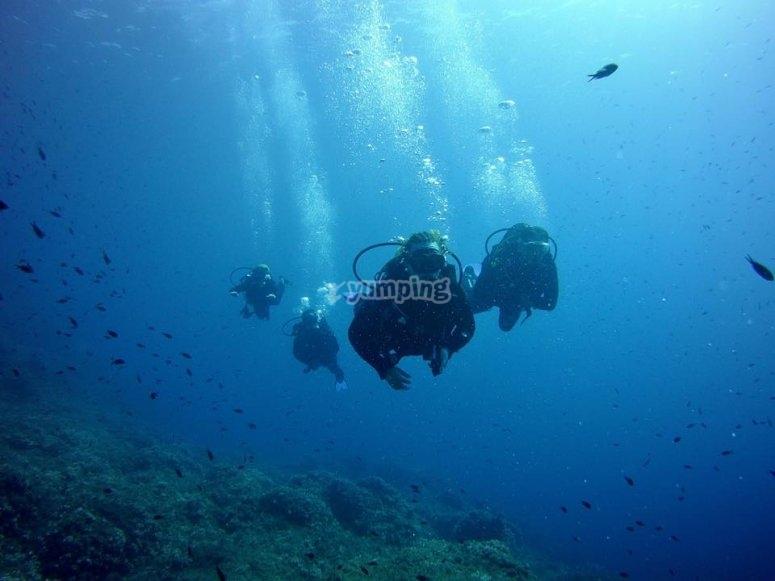 grupo de buceo en Menorca