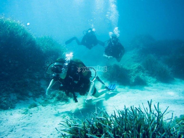 在海底潜水