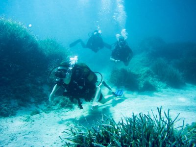 Curso Instructor PADI en Menorca
