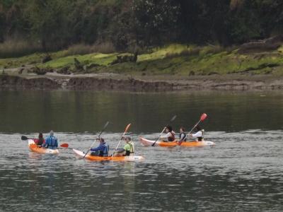 Alquiler de canoa desde El Astillero 3 horas